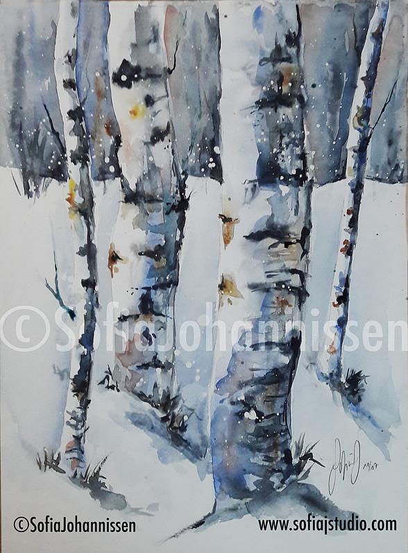 paysage hiver @SofiaJojannissen